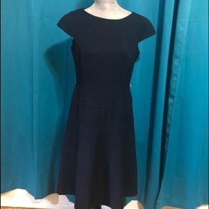Ann Klein navy career dress.